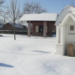 Zimní foto